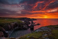 National Geographic Your Shot Newfoundland And Labrador, His Travel, National Geographic Photos, National Museum, Landscape Photographers, Amazing Photography, Sunrise, Wildlife, Tours
