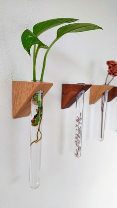 House Plants Decor, Plant Decor, Woodworking Projects Diy, Diy Wood Projects, Diy Home Crafts, Diy Home Decor, Diy Para A Casa, Wall Shelves Design, Flower Stands
