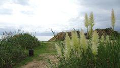 Sant Pol de Mar (1 o