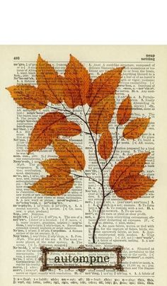 "autumn branch photo Quirky/Fall-vintage'y kids art - have child write ""Fall"" in box at bottom of old book page. If child isn't writing, ask him/her to cut & paste a word and have them try to write it underneath. Book Page Art, Old Book Pages, Book Art, Old Books, Book Crafts, Arts And Crafts, Paper Crafts, Newspaper Art, Newspaper Painting"