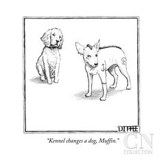 """Kennel changes a dog, Muffin."" - New Yorker Cartoon Poster Print by Matthew Diffee at the Condé Nast Collection"