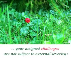 ... your assigned #challenges are not subject to external #severity !