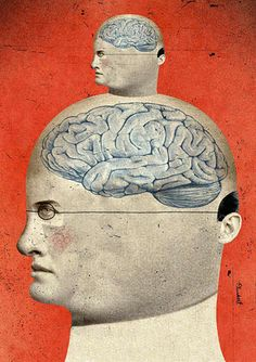 Pea-Brained: Microbrain Could Yield Maximum Payoff