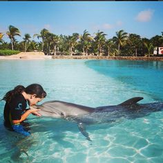 Make friends with a dolphin in Nassau Paradise Island!