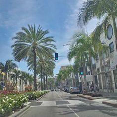 Rodeo Drive, Beverly Hills LA