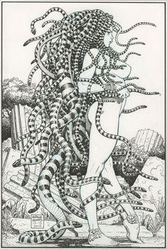 Medusa by Arthur Adams