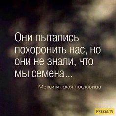 Мудрые мысли и мотивирующие цитаты в картинках (38 фото) Self Development, Good Thoughts, Great Words, Ukraine, Psychology, Poetry, Motivation, Sayings, Humor