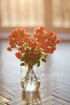 rose by Venge1, via Flickr Photography Ideas At Home, Cute Photography, Home Flowers, Beautiful Flowers, Flowers Nature, My Flower, Flower Vases, Home Flower Arrangements, Artsy Photos