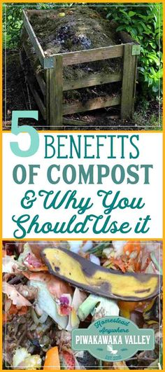 I love using compost on my garden! The benefits to having your own compost in your garden is huge. Here at 5 of the best reasons why you should be making your own compost. Aquaponics Diy, Aquaponics System, Organic Compost, Organic Gardening, Urban Gardening, Vegetable Gardening, Organic Farming, Sustainable Gardening, Veggie Gardens