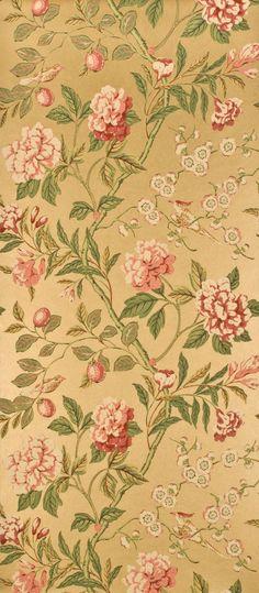 Petite Floral Vintage Polka Dots Flowers Rose Pink Wallpaper Beige Cream Vinyl
