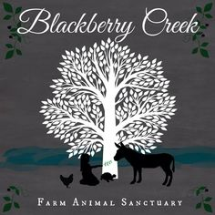 New Farm Sanctuary Seeks to Rescue Animals and Heal People