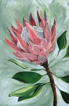 King Protea Botanical Flower Painting ORIGINAL Acrylic Canvas Artwork // Pink Hues, Gift for Mum, Lounge Wall Decor, Pretty, Beautiful Flor Protea, Protea Art, Protea Flower, Botanical Flowers, Botanical Prints, Pink Flowers, King Protea, Maila, Canvas Artwork