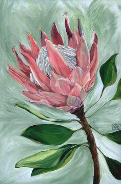 King Protea Botanical Flower Painting ORIGINAL Acrylic Canvas Artwork // Pink Hues, Gift for Mum, Lounge Wall Decor, Pretty, Beautiful Flor Protea, Protea Art, Protea Flower, Botanical Flowers, Botanical Prints, Painting Prints, Fine Art Prints, Floral Drawing, Canvas Artwork