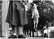 incredible black and white photos - Google Search