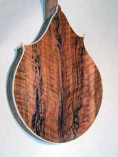 Mandolin Instrument | Re: Searching for picture of instrument made of diseased wood. Makes a whole new meaning for diseased!