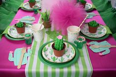 Cactus Fiesta Complete Party Kit for 8 or 16 - Birthday - Baby Shower- Bridal Shower - Engagement P Girl Birthday, Birthday Parties, 10th Birthday, Half Birthday, Birthday Stuff, Palm Springs, Tulle Poms, Party Kit, Party Ideas