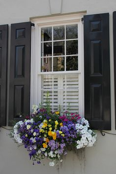 CURB APPEAL – Charleston flower boxes and shutters for the windows add charact… – 2019 - Flowers Decor Window Box Plants, Window Box Flowers, Window Planter Boxes, Flower Boxes, Flower Ideas, Container Plants, Container Gardening, Ventana Windows, Dream Garden