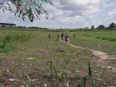 Crianças brincando, no pasto de minha égua Apaloosa no Sidilândia em 30/05/2013.