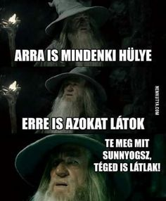A Confused Gandalf meme. Caption your own images or memes with our Meme Generator. Silly Jokes, Funny Jokes, Funniest Memes, Funny Laugh, Hilarious, Programming Humor, Best Crossover, Funny Comebacks, Funny Character
