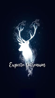 15 Harry Potter inspired wallpapers to fill . - Mobile wallpaper with the illuminated silhouette of in deer, expecto patronum, Harry Potter Harry Potter Tumblr, Harry Potter Magie, Memes Do Harry Potter, Images Harry Potter, Arte Do Harry Potter, Harry Potter Spells, Harry Potter Love, Harry Potter Universal, Harry Potter Fandom