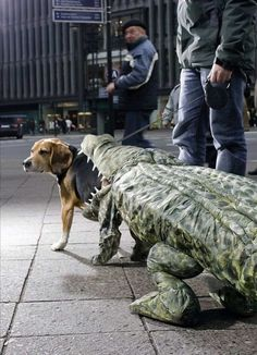 If I ever made a Halloween costume for my dog, I would do something like this.