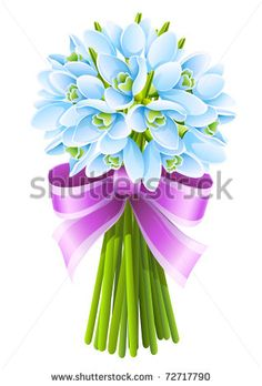 spring snowdrop flowers bouquet with pink ribbon isolated on white background…