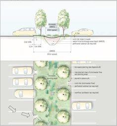rain-garden-cross-section