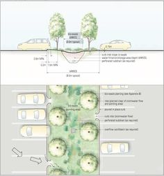 rain-garden-cross-section