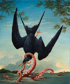 Birds of America: Icarus
