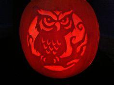 Owl Pumpkin Carving   Flickr - Photo Sharing!