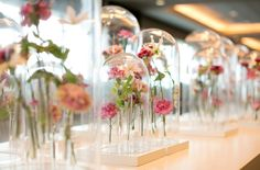 Accent Decor is a b2b supplier offering innovative and cutting edge products that provide inspiration for the home decor, event, and floral industry