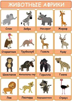 Learning Languages Tips, Playing Cards, Album, Games, Animals, Animales, Animaux, Playing Card Games, Gaming