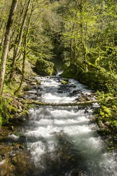 "belas-imagens: "" Columbia River Gorge """