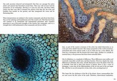 The Textile Blog: Inspirational Magazine