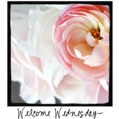 Welcome Wednesday! Come visit www.facebook.com/awarmhello to SHARE photos each day with your friends and followers!