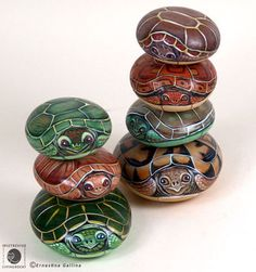 Painted turtle rocks.