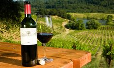 go and sample some lovely wine at a vineyard or two (hunter valley is the most famous area near Sydney)