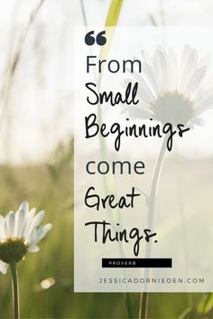 """From small beginnings come great things!"" - Proverb #inspirational #motivational #quotes"