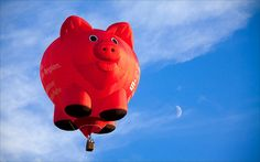 """""""when pigs fly!"""""""