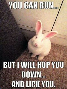 I WILL HOP YOU DOWN AND LICK YOU!