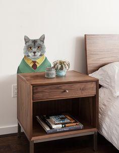 Zoo Portraits: Cat