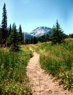 path + mountain view = bliss