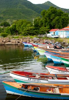 Fishing Boats - Martinique
