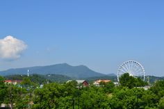 The Island in Pigeon Forge - Fun for all who visit!