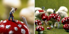 miniature photography - incredibly enchanting and surreal worlds made of little people - It's a small world afterall! Art Du Monde, Miniature Photography, Mushroom Art, Tiny Mushroom, Tiny World, Mini Things, People Art, Miniture Things, Malm