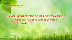 La mejor música cristiana 2018 | La voluntad de Dios se ha abierto a todos Wille, Christian Music Videos, Chor, Kirchen, Gods Love, Gods Wil, Itunes, Musicals, Youtube