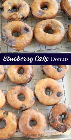 Homemade Blueberry Cake Donuts are perfect for breakfast and brunch. Make AHEAD and fry up fresh in the morning! #homemade #blueberry #donuts #doughnuts #breakfast #brunch #recipes
