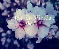 Vete a la Mierda.. ♥.♥