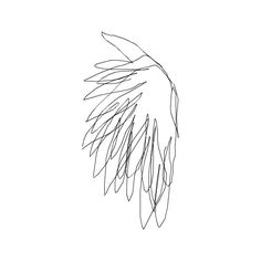 Sans titre.png ❤ liked on Polyvore featuring wings, scribbles, backgrounds, doodle and filler