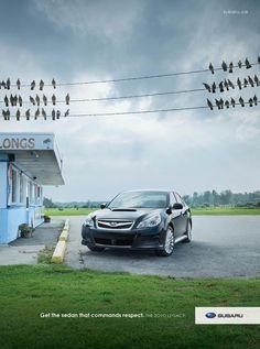 Subaru - Get the sedan that commands respect. Funny Advertising, Creative Advertising, Automobile, Tokyo, Sumo, Subaru Cars, Subaru Outback, Best Ads
